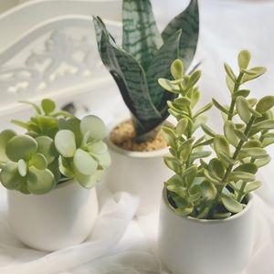 Artificial Plant bundle